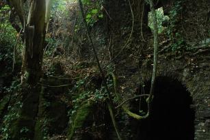 cascata4