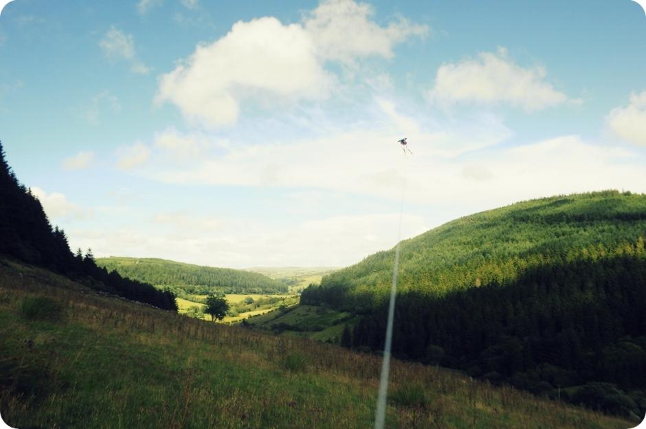 flying_kites (1)