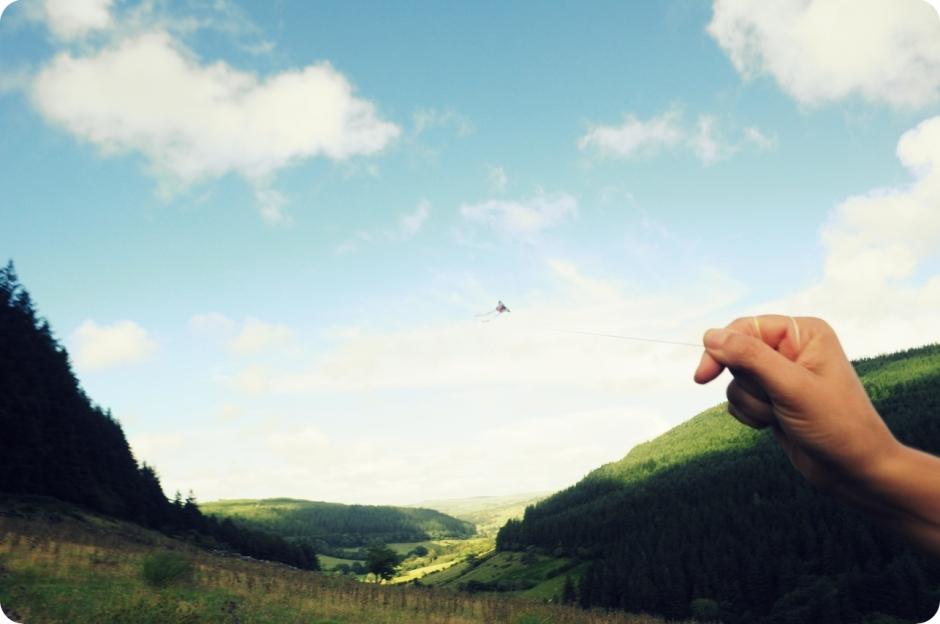 flying_kites (2)