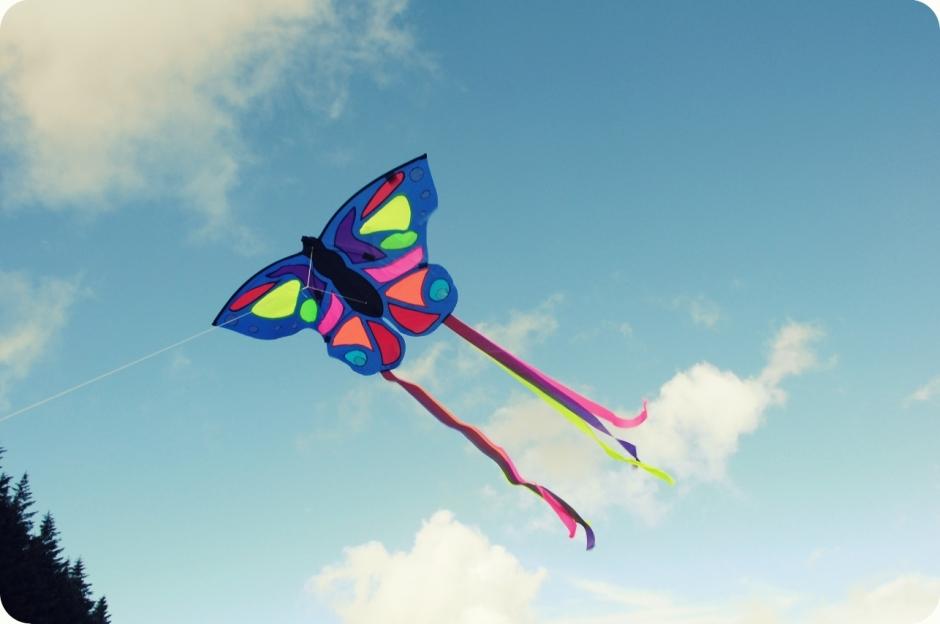 flying_kites (3)