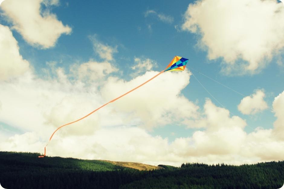 flying_kites (4)