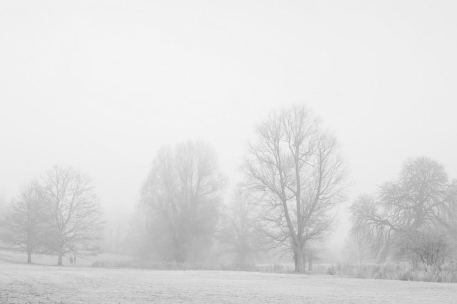 branco (3)